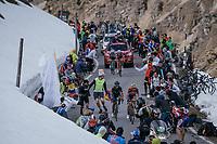 Vincenzo Nibali (ITA/Bahrain-Merida) &amp; Nairo Quintana (COL/Movistar) go head-to-head up the final climb of the day: the Umbrailpass (Alt: 2502m)<br /> <br /> Stage 16: Rovett &rsaquo; Bormio (222km)<br /> 100th Giro d'Italia 2017