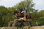 6th May 2017, Andrew Nicholson riding Qwanza during the Cross Country phase of the 2017 Mitsubishi Motors Badminton Horse Trials, Badminton House, Bristol, United Kingdom. Jonathan Clarke/JPC Images