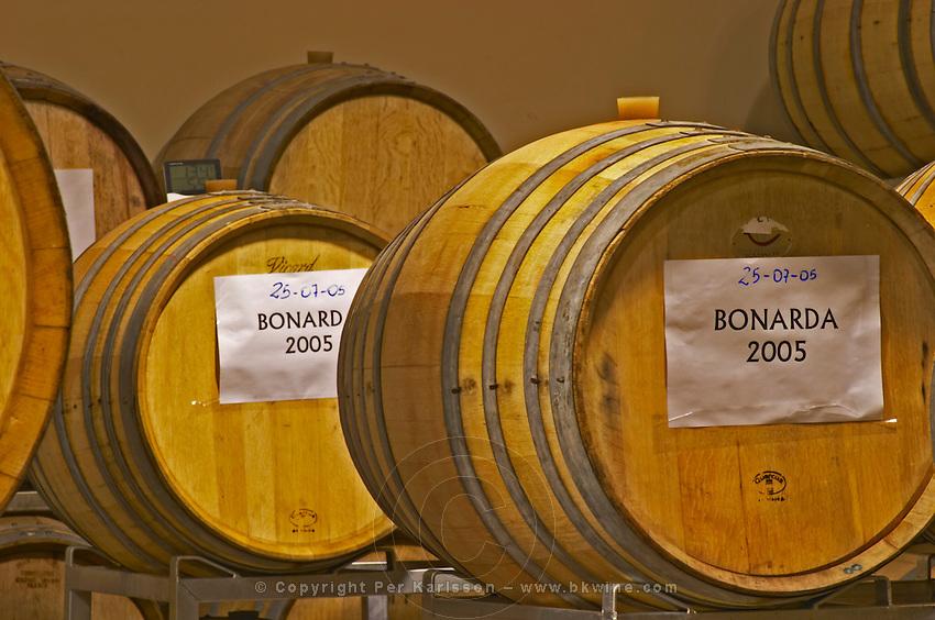 Oak barrels with signs Bonarda 2005 Bodega Del Anelo Winery, also called Finca Roja, Anelo Region, Neuquen, Patagonia, Argentina, South America