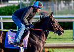 LOUISVILLE, KENTUCKY - APRIL 27: Serengeti Empress, trained by Tom Amoss, exercises in preparation for the Kentucky Oaks at Churchill Downs in Louisville, Kentucky on April 27, 2019. Scott Serio/Eclipse Sportswire/CSM