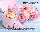 Alfredo, FLOWERS, BLUMEN, FLORES, photos+++++,BRTOLMN56274,#f#, EVERYDAY ,rose,roses