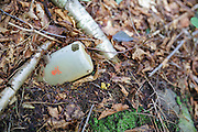 Plastic bottle with skull & crossbones on it in the forest of Kinsman Notch in Woodstock, New Hampshire USA during the summer months