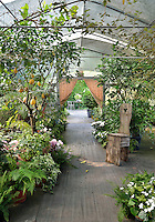 A variety and flowers and shrubs in pots are arranged in a greenhouse.
