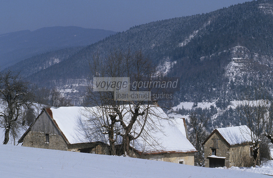 Europe/France/Rhône-Alpes/38/Isère/Env de Villard-de-Lans: Fermes dans les montagnes