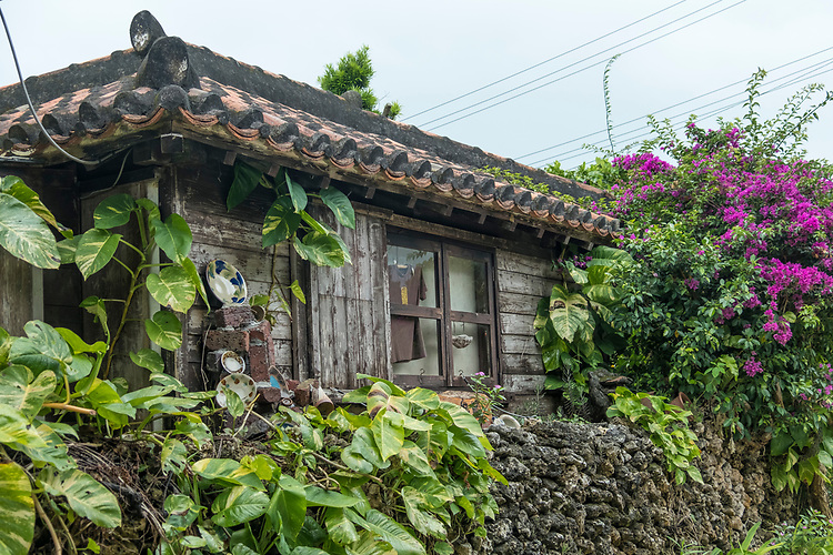The village's traditional, clay-tiled, single story dwellings make for a picturesque stroll through its narrow lanes. Many of the roofs are decorated with traditional 'shiisaa' figurines which are thought to bring luck to inhabitants.