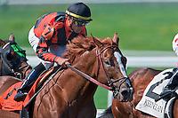 Thoroughbred horse racing, Keeneland, Lexington, Kentucky