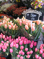 PARIS--Markets & Food
