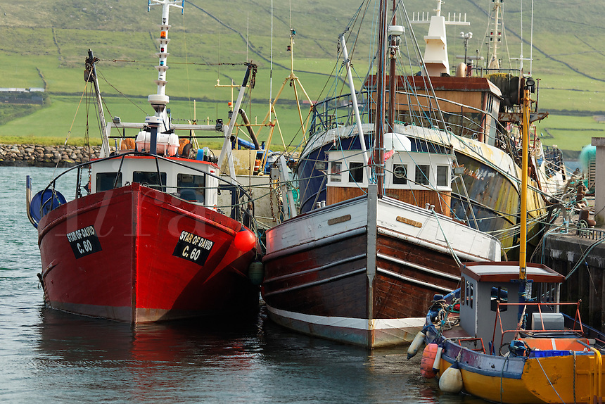 Fishing boats at dock in Dingle Harbour, Dingle (An Daingean), Dingle Peninsula, County Kerry, Republic of Ireland