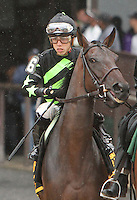 September 13, 2014: Annecdote with Irad Ortiz, Jr. win the Grade III Noble Damsel for fillies & mares, 3-year olds & up, going 1 mile on the turf at Belmont Park. Trainer: Christophe Clement . Owner: George Bolton and Peter Leidel . Sue Kawczynski/ESW/CSM
