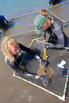 Measuring Shovelnose Guitarfish
