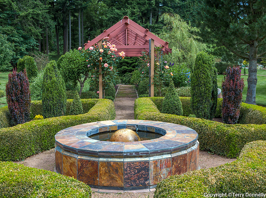 Vashon Island, WA: Decorative fountain with boxwood hedge and rose pergola in Froggsong garden in summer