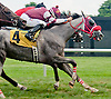 Xavier Perez aboard Work It Out winning at Delaware Park on 7/22/13