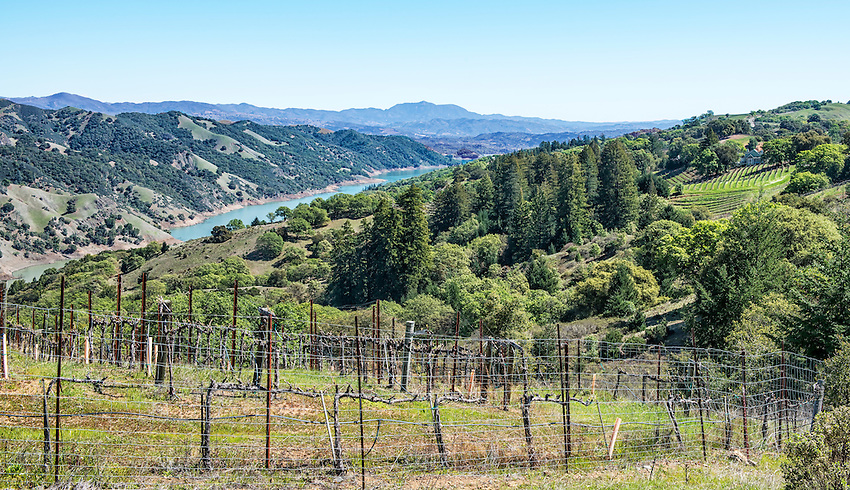 A view from the Rockpile winegrowing region, along Rockpile Road in north Sonoma County. A portion of Dry Creek can be seen below. Rockpile is an official American Viticultural Area (AVA) and contains vineyards growing Cabernet Sauvignon, Petite Sirah and Zinfandel.