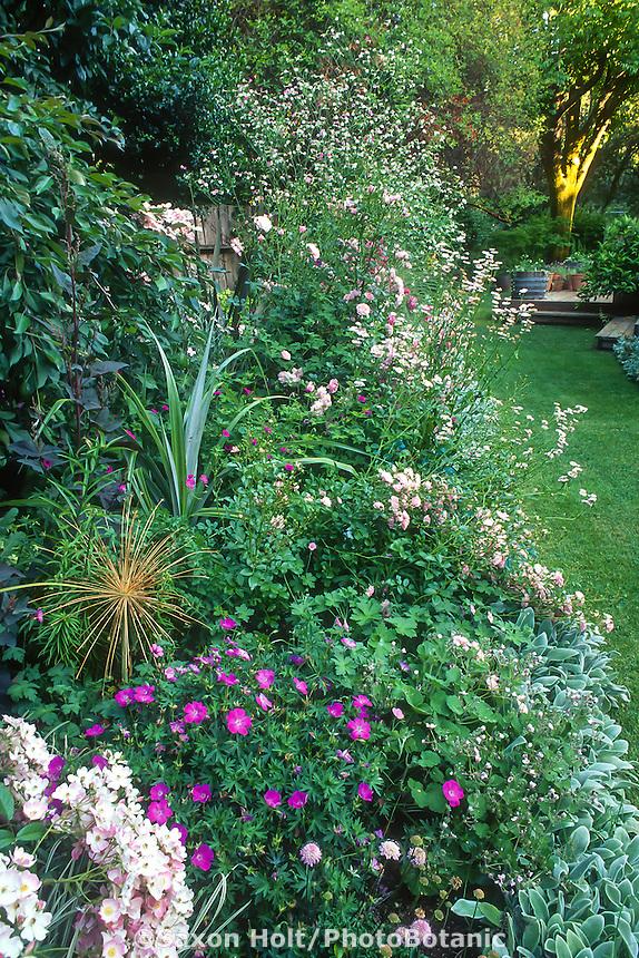 Mixed border with Geranium sanguineum 'Kristin Jacobs'l in Robin Parer garden