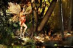 KT fairy