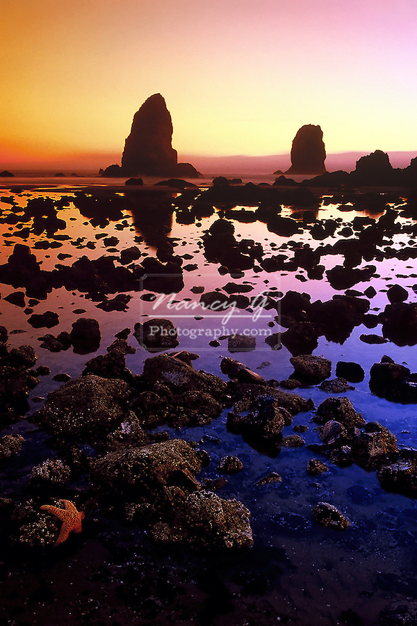 Cannon Beach Haystack and tidal pool.