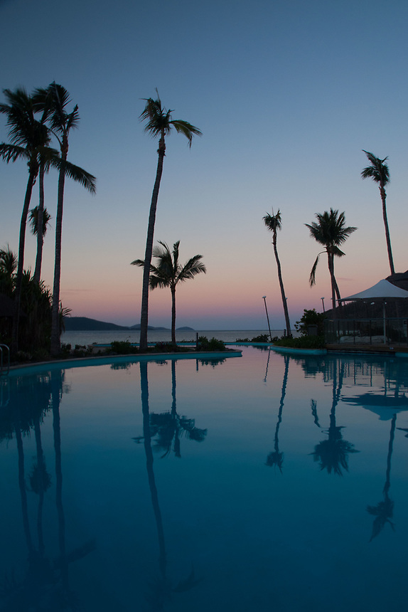 Pool and Palms, Hamilton Island, Queensland, Australia