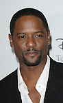 Blair Underwood arriving at the Disney ABC Television Group All Star Party, that was held at the Beverly Hilton Hotel, Beverly Hills, Ca. July 17, 2008. Fitzroy Barrett