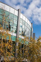 Fall colors at UAA's Consortium Library.