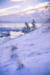 Idaho,North, Coeur d'Alene. Soft winter light of a dawn over Lake Coeur d'Alene after a fresh new snowfall.