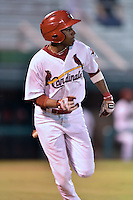 Johnson City Cardinals left fielder Anthony Ray #3 runs to first during a game against the Danville Braves at Howard Johnson Field September 4, 2014 in Johnson City, Tennessee. The Braves defeated the Cardinals 6-1. (Tony Farlow/Four Seam Images)