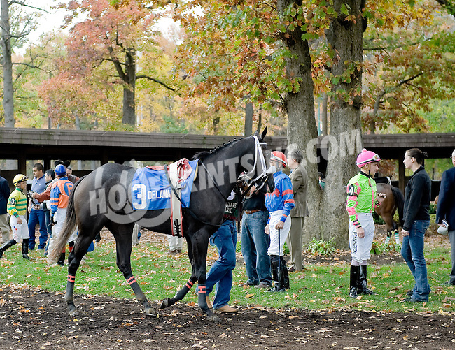 Doubled before The Xtra Heat Stakes at Delaware Park on 10/27/12...