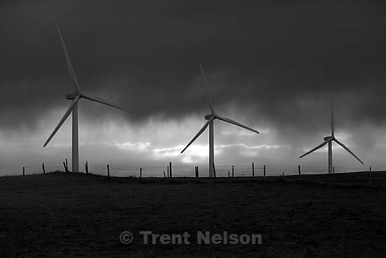 magrath windmills, clouds, cows.<br />