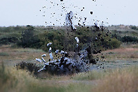Pictured: The controlled explosion takes place.<br /> Re: A Bomb Disposal Unit was called after a bomb was discovered at a scrap yard in Skewen near Neath, and then transported to Crymlyn Burrows beach for a controlled explosion in south Wales, UK.