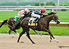 On Balance winning at Delaware Park racetrack on 6/10/14