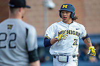 Michigan Wolverines first baseman Jordan Brewer (22) scores a run against the Western Michigan Broncos on March 18, 2019 in the NCAA baseball game at Ray Fisher Stadium in Ann Arbor, Michigan. Michigan defeated Western Michigan 12-5. (Andrew Woolley/Four Seam Images)