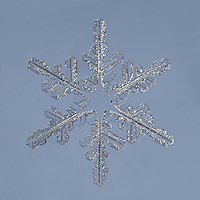 Snowflake Spinel - Stellar Dendrite Snowflake