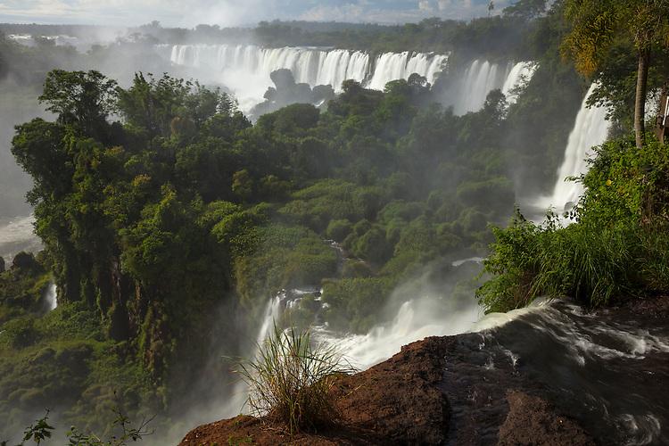 The Iguazu Falls area is enveloped in a subtropical rainforest.