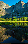 Yosemite Falls Reflected in Cook's Meadow at Sunrise, Yosemite National Park
