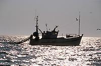 """Europe/France/Bretagne/29/Finistère/Le Guilvinec: Le """"Gwenvidik"""" bateau de peche à la langoustine"""