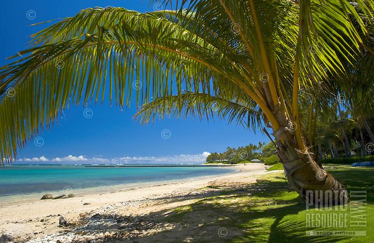 Kahala Beach, Oahu