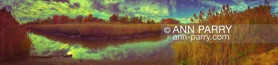 Norman J Levy Park & Preserve marshland during  autumn afternoon, a panorama