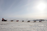 Rookie musher Jane Faulkner runs on the sea ice nearing the finish line in Nome during the 2010 Iditarod