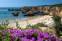 Portugal, Algarve, near Portimao: View over Bougainvillea to Praia do Vau