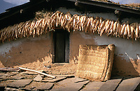 The outside of a typical village house in Pangtang, in central northern Nepal. Woven floor matting is airing and a stock of winter vegetables hangs under the eaves.