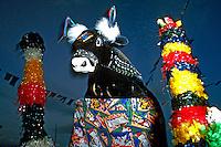 Festa do Bumba-meu-boi. São Luis do Maranhão. 1988. Foto de Cynthia Brito.