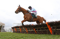 Priors Gold ridden by Gerard Tumelty in jumping action in the Gold Driving Safer For Longer Selling Hurdle