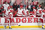 2013-14 NCAA Hockey: Northern Michigan at Wisconsin