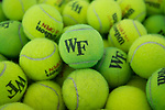 The Wake Forest Demon Deacons played host to the Liberty Flames in NCAA women's tennis action at the Wake Forest Indoor Tennis Center on March 11, 2017 in Winston-Salem, North Carolina. The Demon Deacons defeated the Flames 6-1.  (Brian Westerholt/Sports On Film)