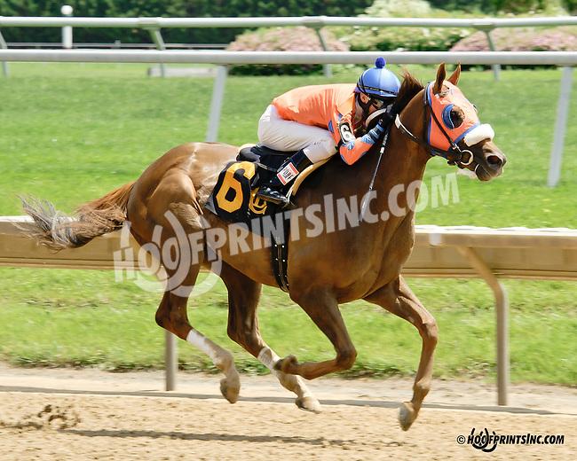 Irish Moon winning at Delaware Park racetrack on 6/5/14