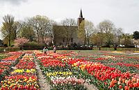 Hortus Bulborum in Limmen.  In de tuin staan meer dan 4000 soorten. De hortus, waarin voornamelijk tulpen staan, is in 1928 opgericht. Veel mensen bezoeken de hortus tijdens de jaarlijkse Bloemendagen