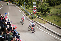 In the race finale it's clear that race leaders Fausto Masnada (ITA/Androni - Giocattoli) & Valerio Conti  (ITA/UAE-Emirates) are disputing the stage victory (& the overall in Conti's case) among them<br /> <br /> Stage 6: Cassino to San Giovanni Rotondo (233km)<br /> 102nd Giro d'Italia 2019<br /> <br /> ©kramon