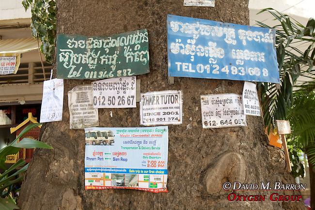 Advertisements On Trees