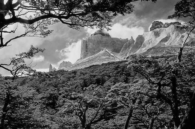 Landscape, Torres del Paine National Park, Chilean Patagonia
