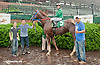 Bethel winning at Delaware Park on 6/10/13