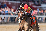 #7 Basin wins the Hopeful S.. (gr 1) ridden by Jose Ortiz trained Steven Asmussen. Sept. 2, 2109: during racing at Saratoga Race Course in Saratoga Springs, New York. Robert Simmons/Eclipse Sportswire/CSM